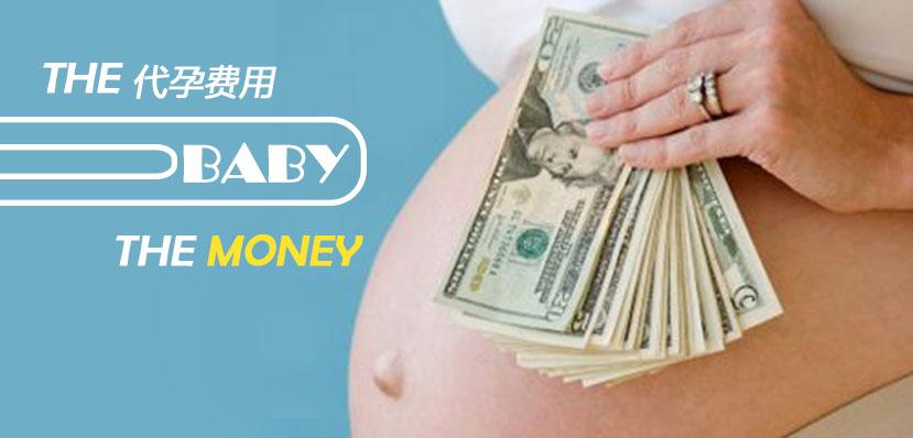 俄罗斯第三方助孕费用及明细详解