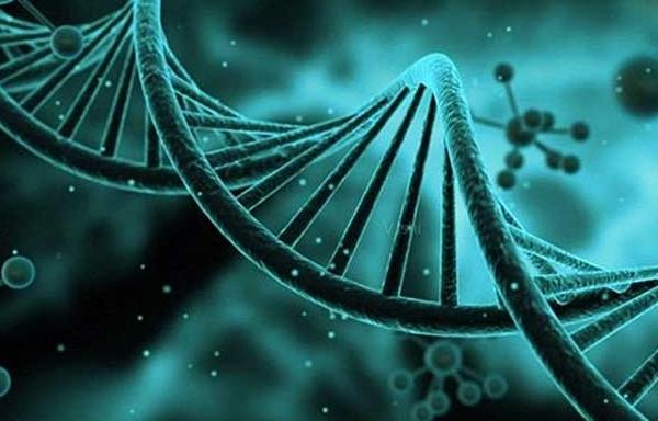 PGSPGD胚胎遗传筛选
