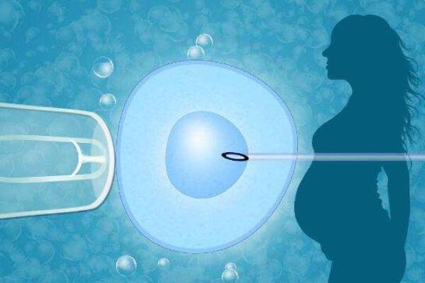 单精子注射.jpg