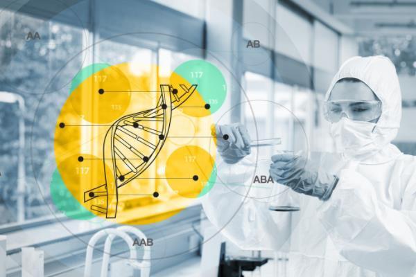 囊胚基因筛查