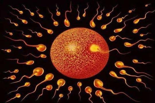 试管婴儿双胞胎一般是龙凤吗