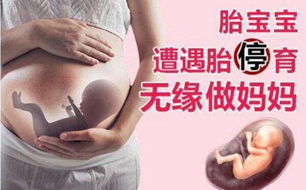 胎停育.jpg