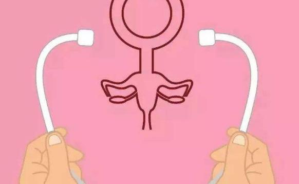 试管包成功,助孕包成功