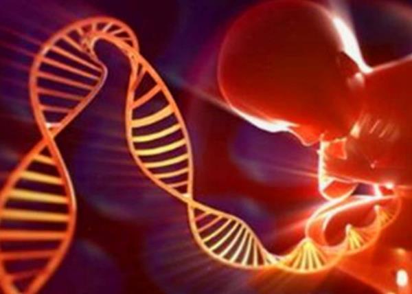宝宝遗传病